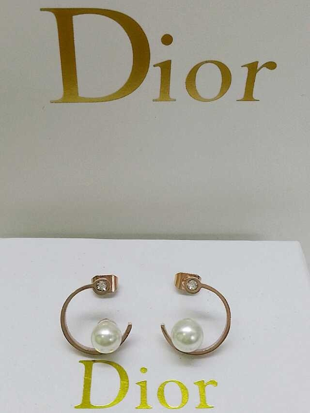 Dior Earrings DJ14072841