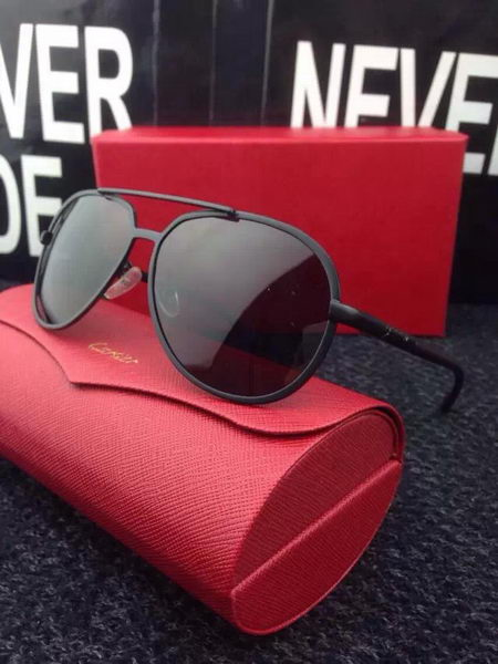 Cartier New Sunglasses CA20169A