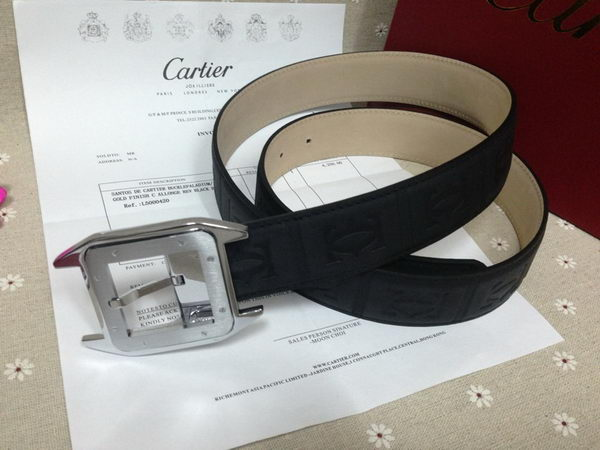 Cartier New Belt KA2010D