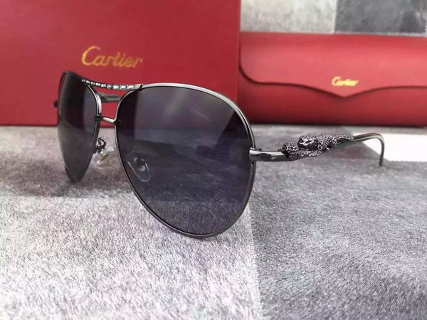 Cartier Sunglasses CTS528002