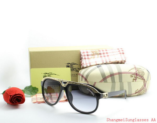 Burberry Sunglasses BU2213A