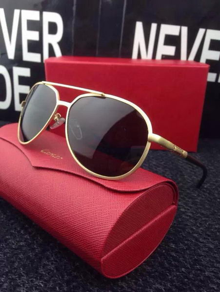 Cartier Sunglasses CTS427017