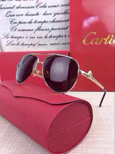 Cartier Sunglasses CTS14110506