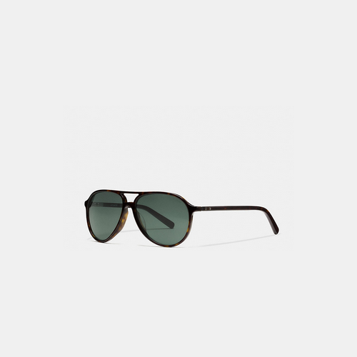 COACH SUTTON sunglasses DARK TORTOISE
