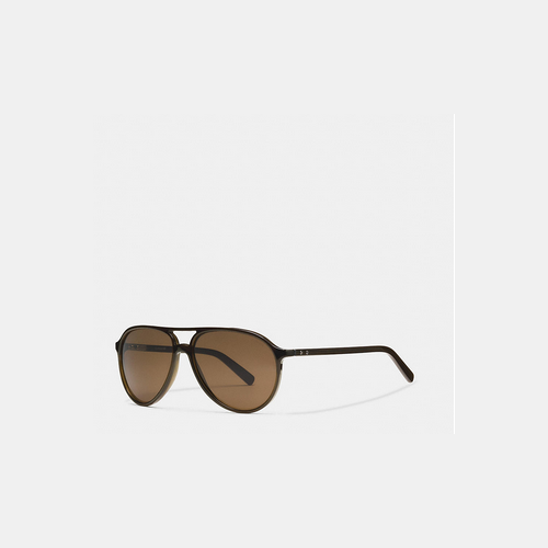 COACH SUTTON sunglasses DARK OLIVE