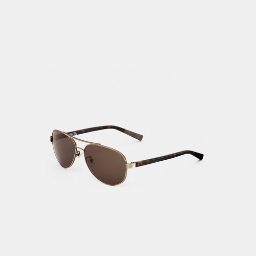 COACH THOMPSON sunglasses ANTIQUE BRASS/DARK TORTOISE