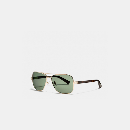 COACH BLEECKER sunglasses GOLD