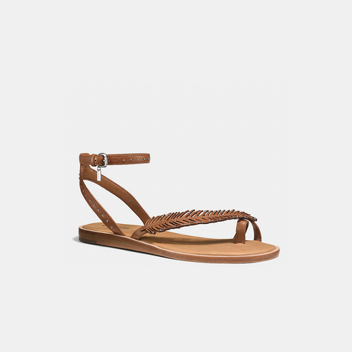 COACH BEACH sandal SADDLE