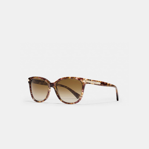 COACH TAG temple cat eye polarized sunglasses CONFETTI LIGHT BROWN