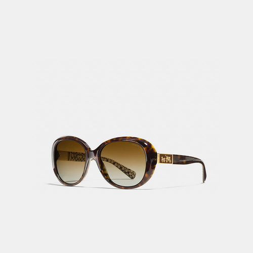 COACH CARTER sunglasses DARK TORTOISE MULTICOLOR