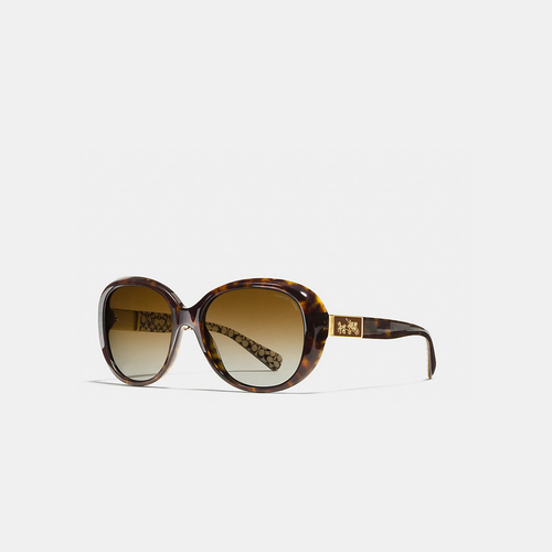 COACH CARTER polarized sunglasses DARK TORTOISE MULTICOLOR