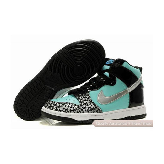 Nike Dunk SB aqua black silver Mens Sneakers