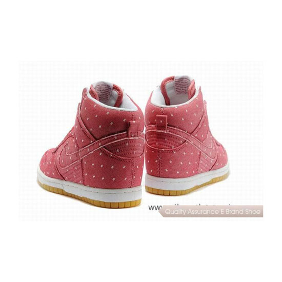 Nike Dunk Shy City Pink Womens Sneakers