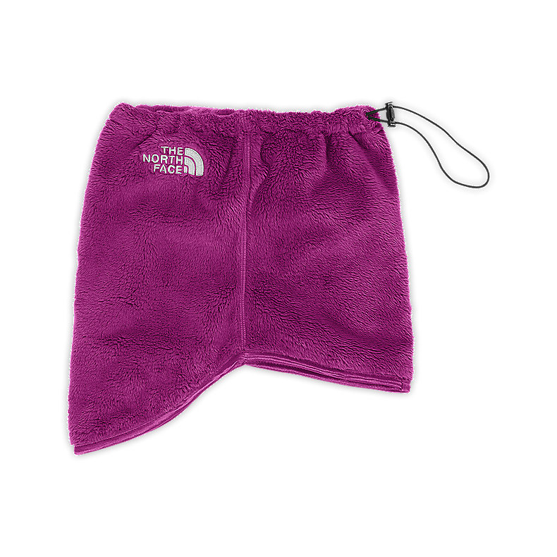 NORTH FACE DENALI THERMAL NECK GAITER PREMIERE PURPLE