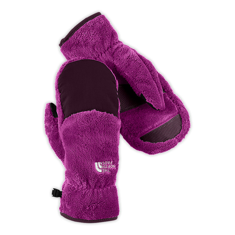 NORTH FACE WOMEN DENALI THERMAL MITT BAROQUE PURPLE / PREMIERE PURPLE