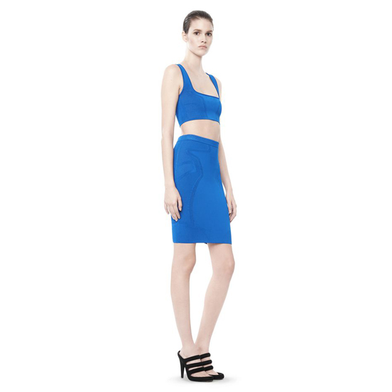 BLUE ALEXANDER WANG OPTICAL MESH PENCIL SKIRT