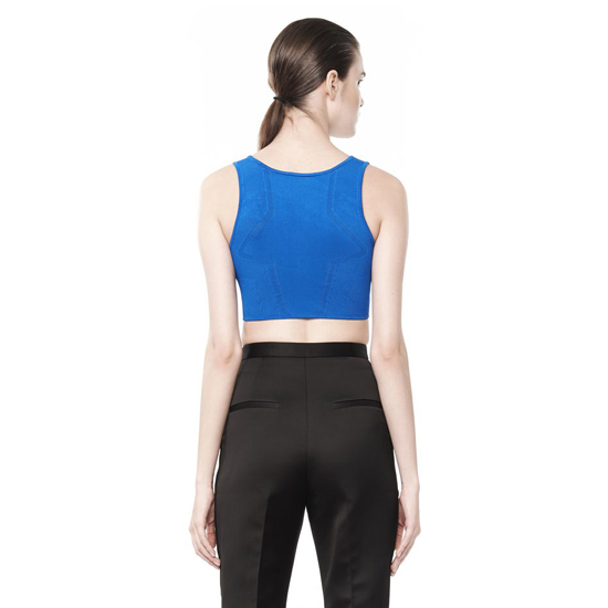 BLUE ALEXANDER WANG OPTICAL MESH BRA