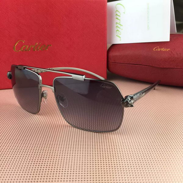 Cartier Sunglasses CTS427042