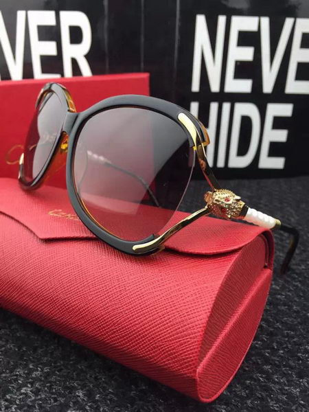 Cartier New Sunglasses CA20168E