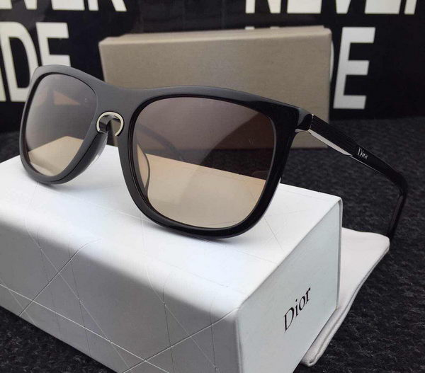 Dior Sunglasses CDS427084