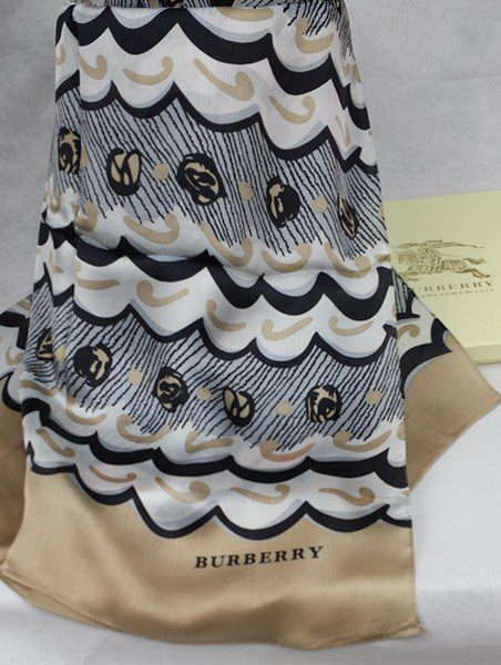 Burberry Scarves BB16015 Brown