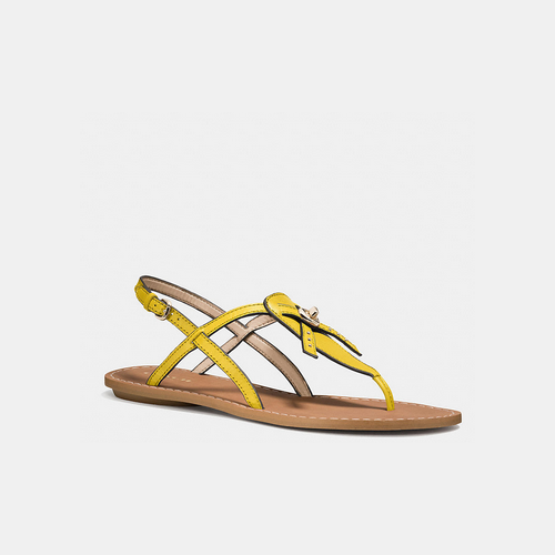 COACH CAMARA sandal YELLOW
