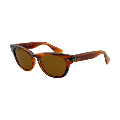 Ray Ban RB4169 Sunglasses Striped Havana Frame Crystal Brown