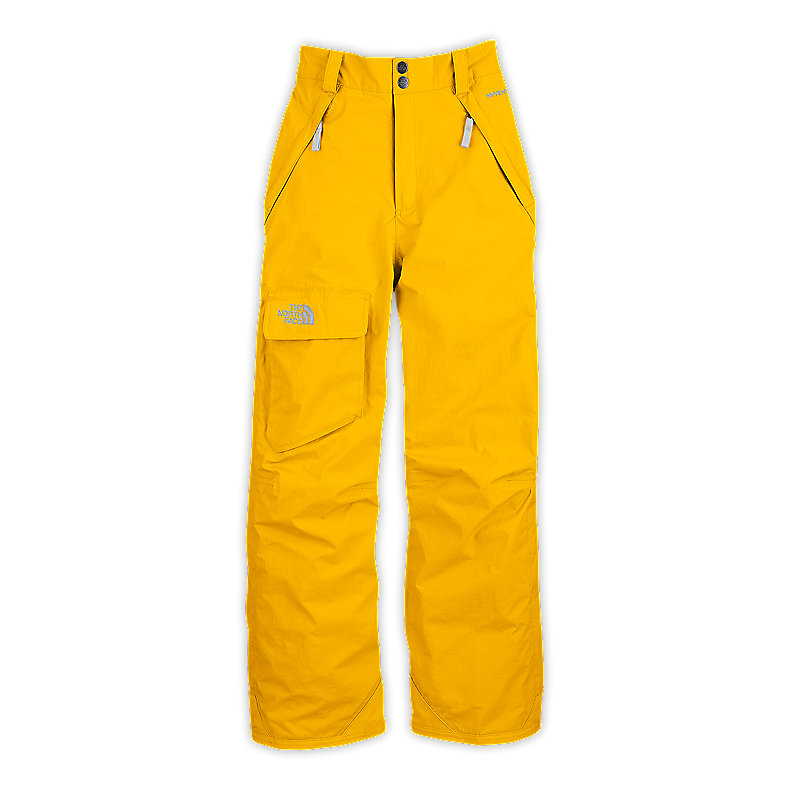 NORTH FACE BOYS FREEDOM INSULATED PANT LEOPARD YELLOW